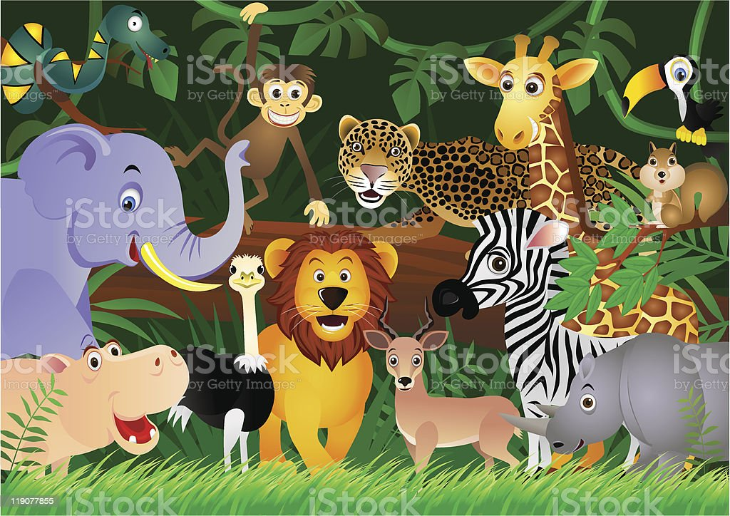 A bunch of animals